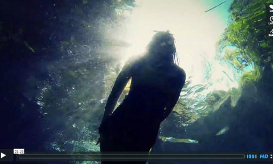 Video: Marietas Islands at Punta de Mita Mexico